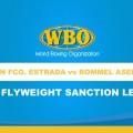 WBO Flyweight Championship Bout