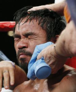 fight-manny-wince_3289930k