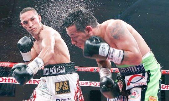 Juan Francisco Estrada retains flyweight title with 10th-round KO